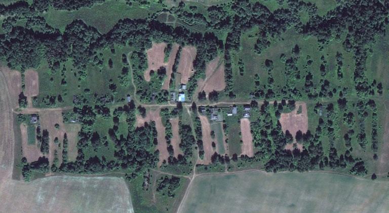 Козлоял-Сюба — деревня в Мари-Турекском районе