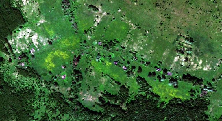 Муза — деревня в Юринском районе