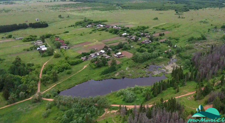 Подгорные Шари — деревня в Волжском районе