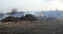 Пожар в деревне Кузьмино в мае 2015 года