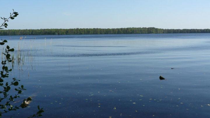 Озеро Лужьяр — гидрологический памятник природы