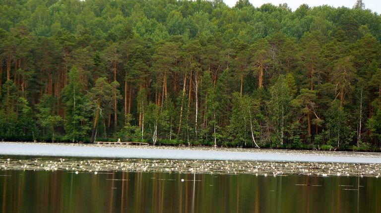 Озеро Шамьяры — гидрологический памятник природы