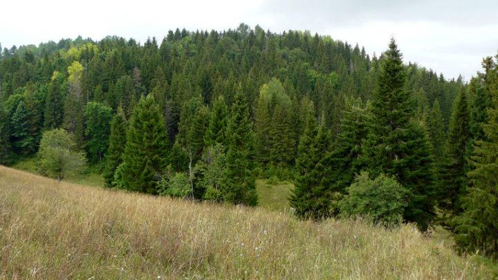 Карман Курык — геологический памятник природы
