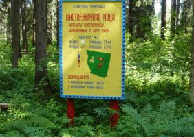 listvennichnyye-roshchi-1