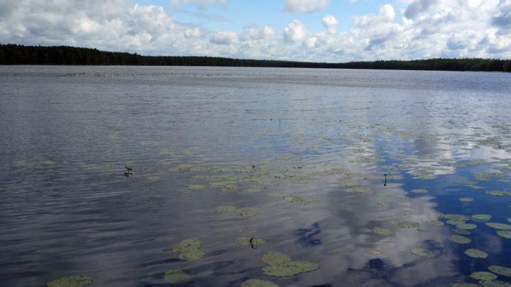 Озеро Мартын — гидрологический памятник природы