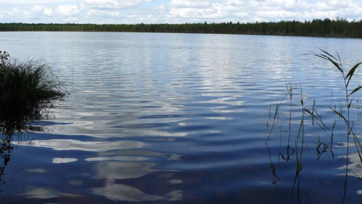 Озеро Черное — гидрологический памятник природы