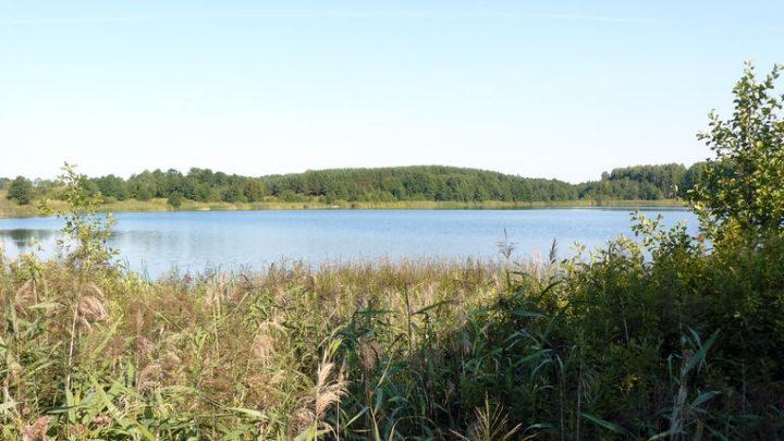Озеро Табашино — гидрологический памятник природы