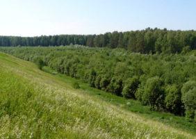 reka-ireka-2