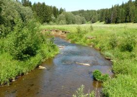 reka-ireka-6