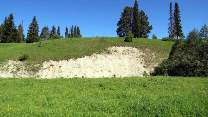 Остепненные склоны и леса по реке Пича — комплексный памятник природы