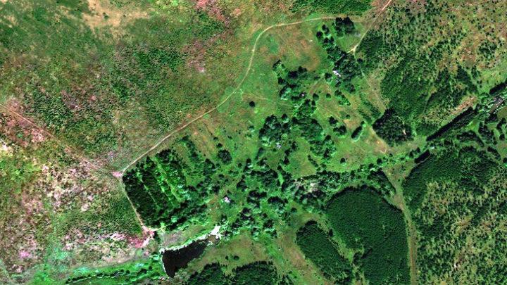 Оськино — деревня в Новоторъяльском районе