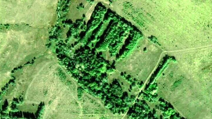 Захарята — деревня в Новоторъяльском районе